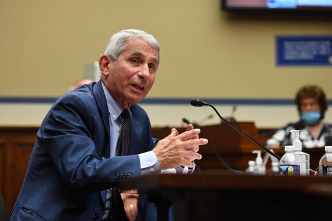 Dr. Anthony Fauci, director of the National Institute for Allergy and Infectious Diseases, testifies before a House Subcommittee on the Coronavirus Crisis. (Photo by Kevin Dietsch-Pool/Getty Images)