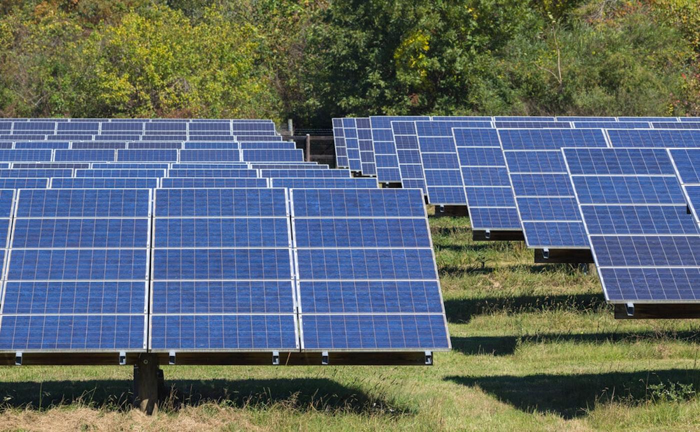 A solar power array in North Carolina. (Image via Shutterstock)