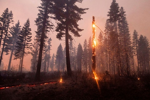 While the economic toll of 2020's wildfires is still not known, the US has experienced huge increases in billion-dollar weather disasters in the past four decades due to climate change (AP Photo/Noah Berger).