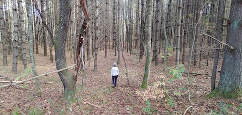 Practicing what she preaches, NC's Margot Rossi wanders in the NC woods.