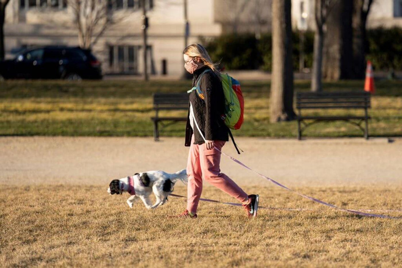 A woman wearing a face mask walks a dog in Washington, D.C., in March. (Image via Getty Images)