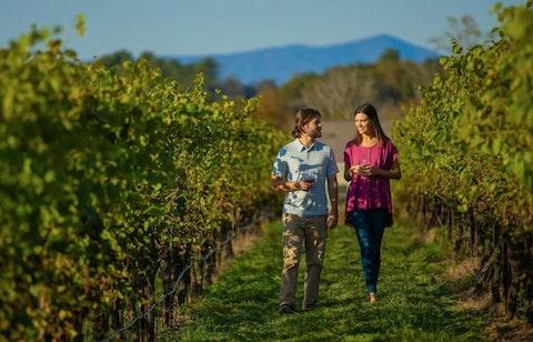 "North Carolina has its own ""wine country"" in Yadkin Valley. (Image via YadkinValleyNC.com)."