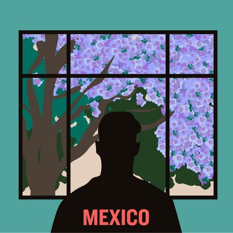 Mexico City Coronavirus Epidemic AMLO