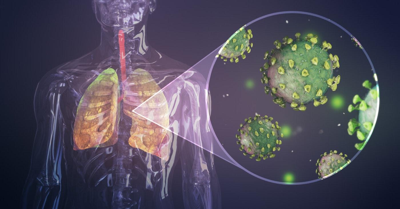 Human body and coronavirus graphic