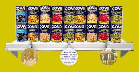 boycott-goya-2