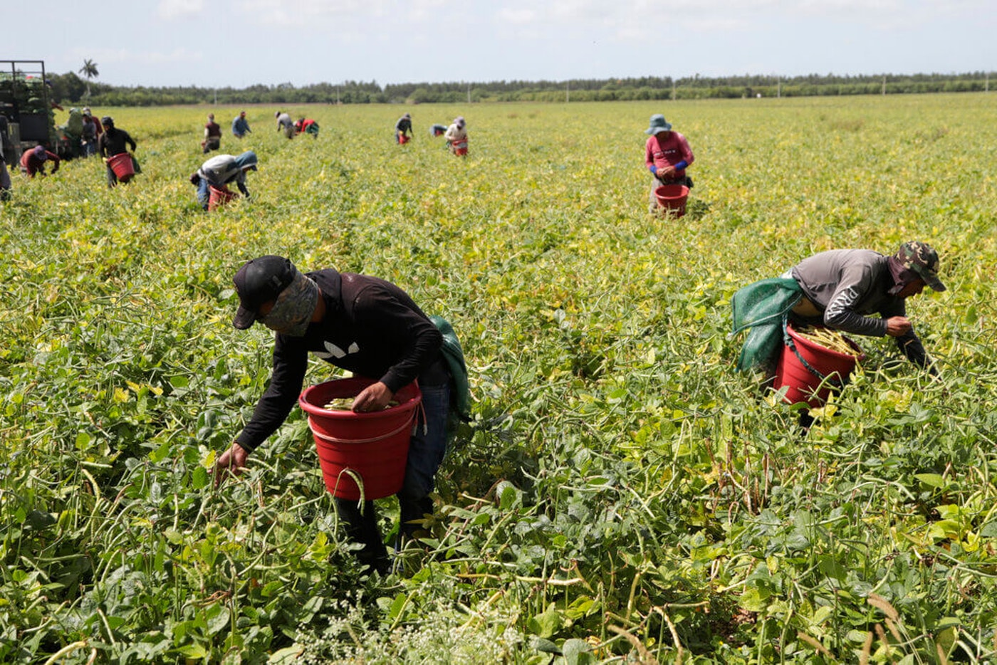 farmworkers-overtime-pay
