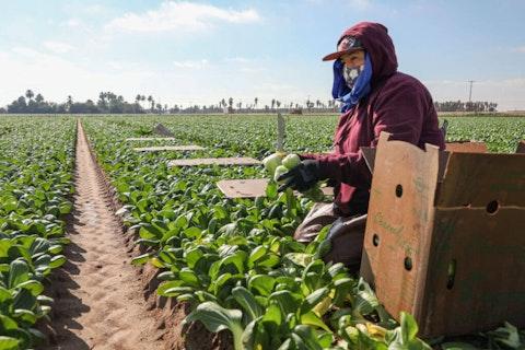 farmworkers-mental-health