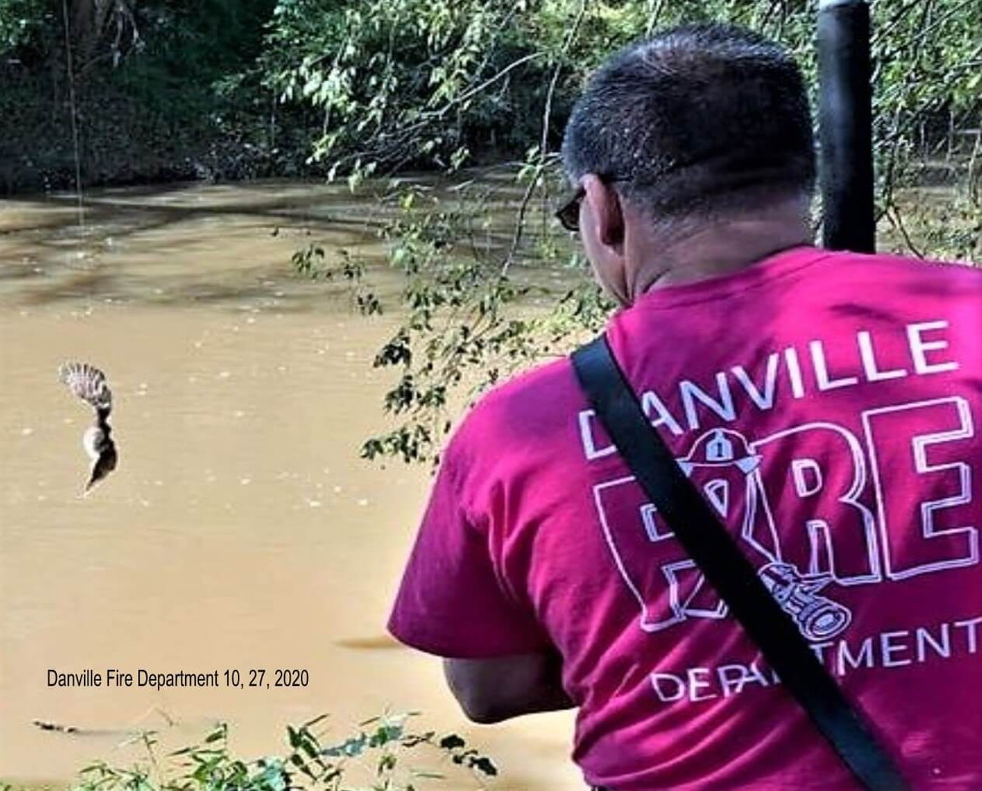Cpt. Jason Curtis of the Danville Fire Department Station 7 rescues an owl tangled in a discarded fishing line. Contributed photo.