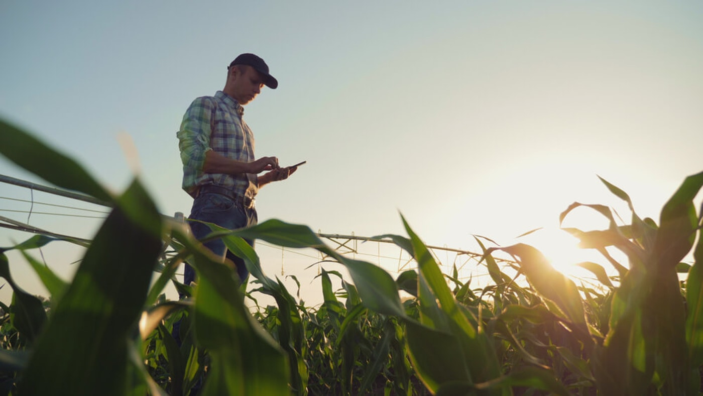 Farmer using a mobile device
