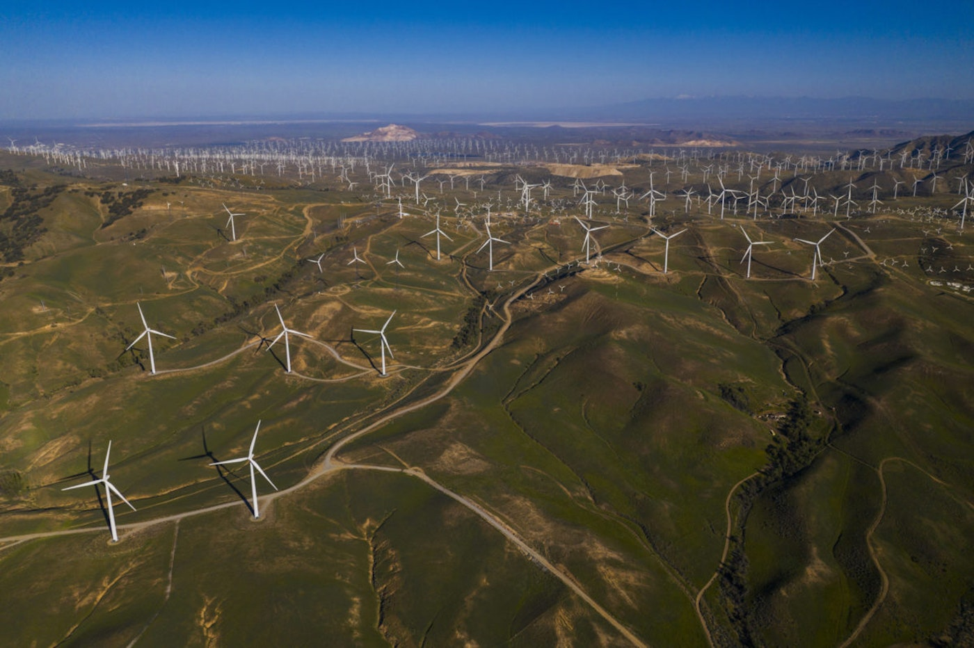 President Trump has openly declared his hatred of windmills—but while his arguments have no basis in scientific reality, they mask a deeper failure of his administration to address climate change or embrace science.