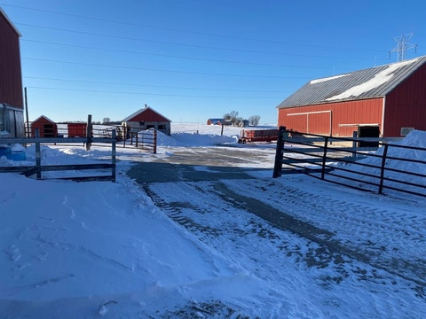 An empty feedlot at a farm in Manitowoc County where dairy cattle were sold off due to poor market conditions. (Photo by Pat Kreitlow)