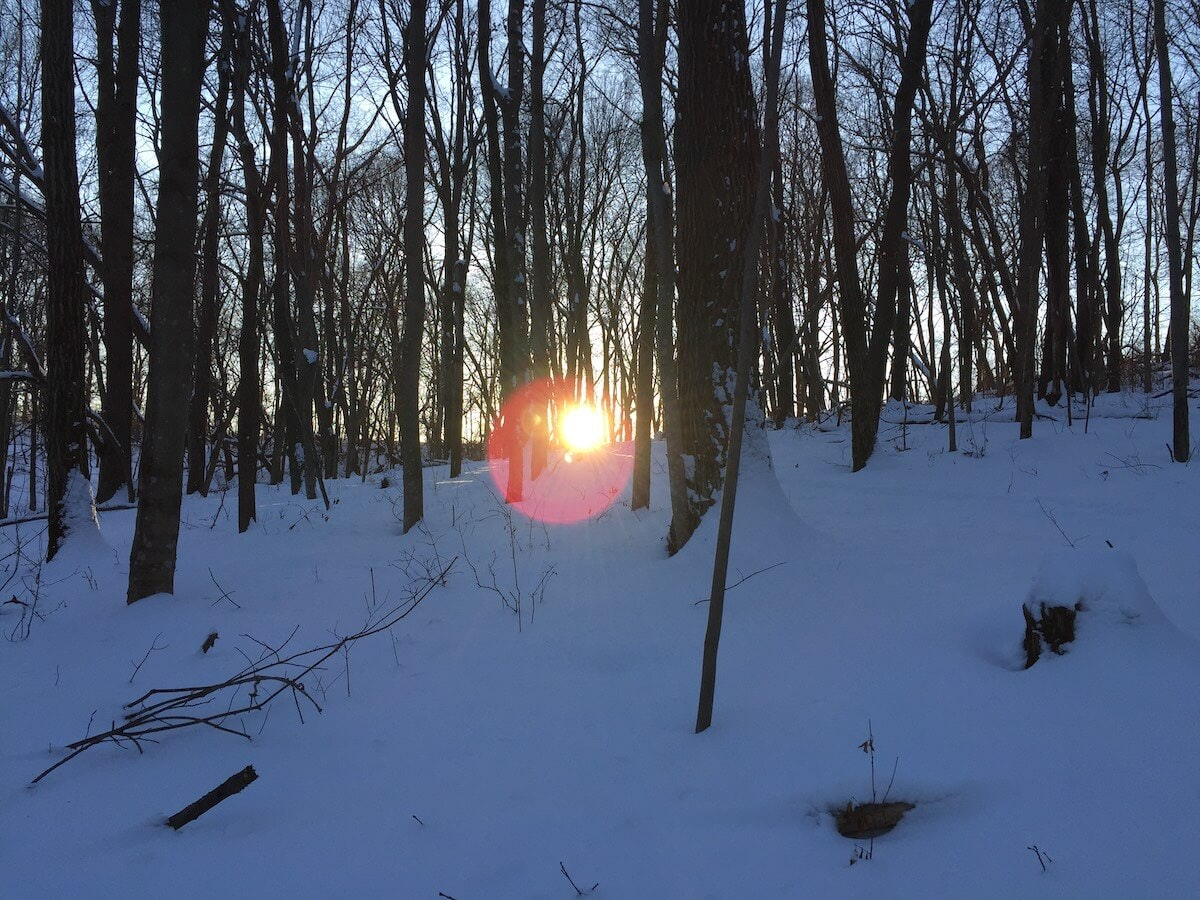 The sun rises over a wooded property in west-central Wisconsin the author called home during his childhood after relocating from Minneapolis with his family. (Photo by Julian Emerson)