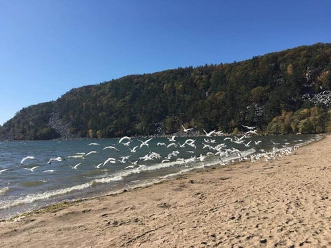 State Parks Are Back to Normal Hours for Holiday Weekend, But Capacity Limits Remain in Place
