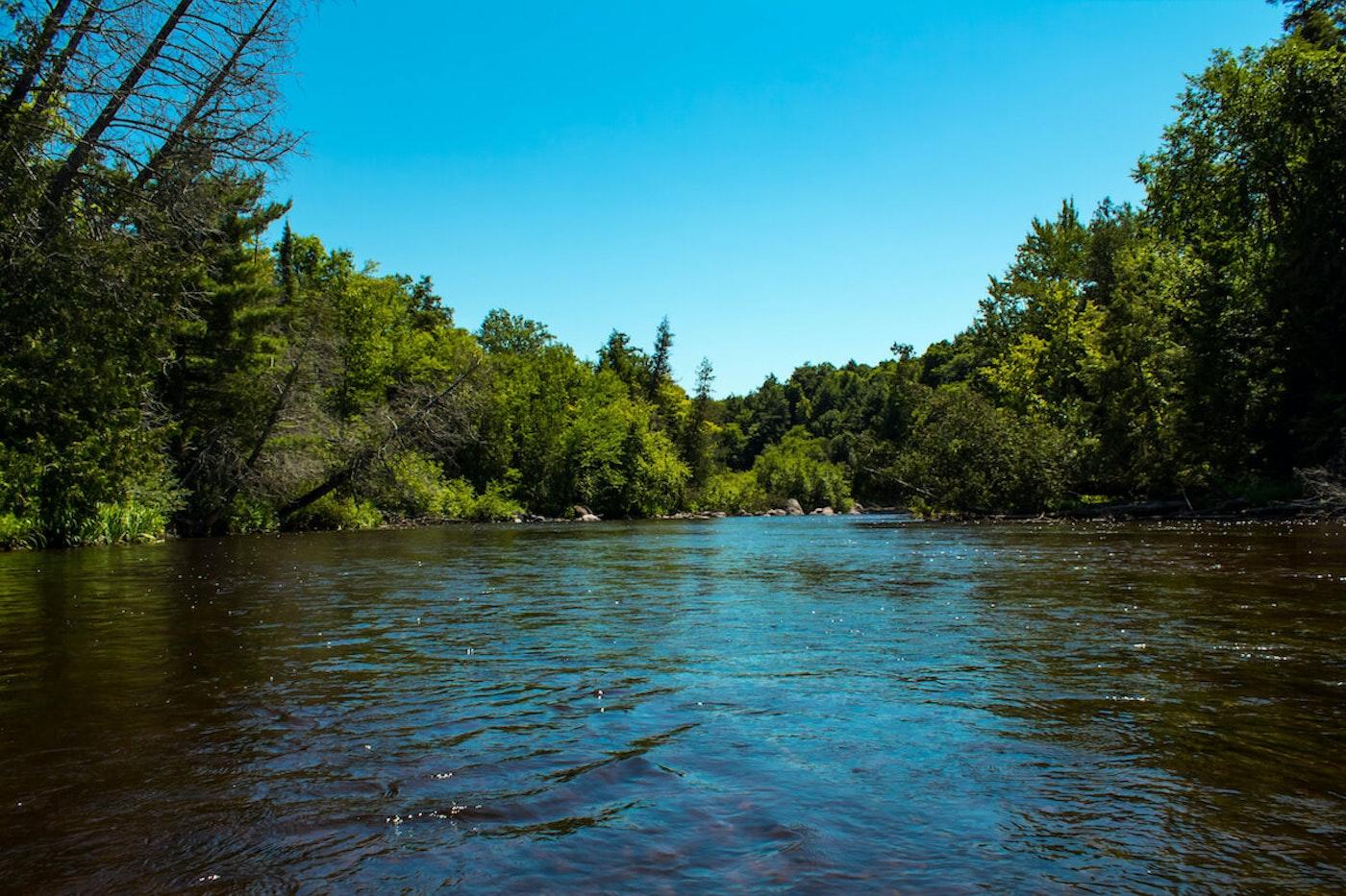 Wisconsin's Wolf River (Image via Shutterstock)