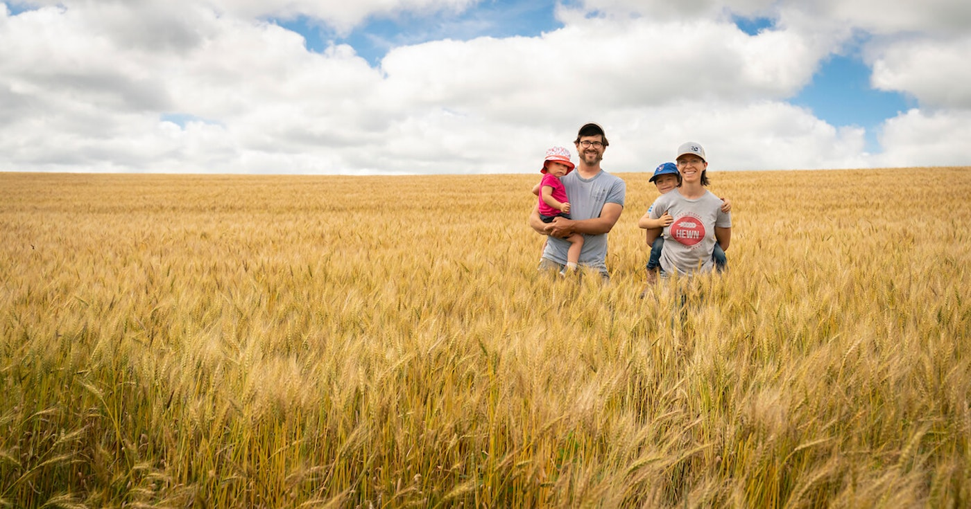 John and Halee Wepking and their children stand in a wheat field that will be harvested soon at their farm in Ridgeway. The grain from the hard red spring wheat will be milled into flour at their Meadowlark Organics business. The family along with Paul Bickford farm 950 acres with ancient grains and dried beans. (Photo © Andy Manis)