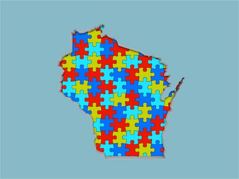 Wisconsin puzzle map