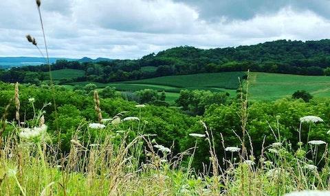 The rolling hills of Buffalo County. (Photo by Julian Emerson)