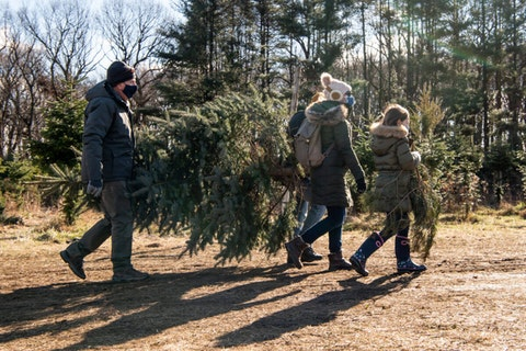 Bob McAdams, left, of Barnegat Light, New Jersey, carries a freshly cut tree with Mario DeMarco, Mara DeMarco, and Addie DeMarco, 7, of Philadelphia, at Tuckamony Farm, in Bucks County, on Sunday, Dec. 6, 2020. Tuckamony Farm sold out a few days later. (Keystone Photo/Michele C. Haddon)