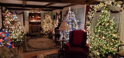 Pictured are some of the 31 Christmas trees that fill Beatrice Barr's Bucks County home. For decades, generations of family would visit the 96-year-old's house to enjoy the trees and a large Christmas dinner. This year, a Facebook Live event took the family and larger community on a virtual tour. (Courtesy of Rich Spotts)