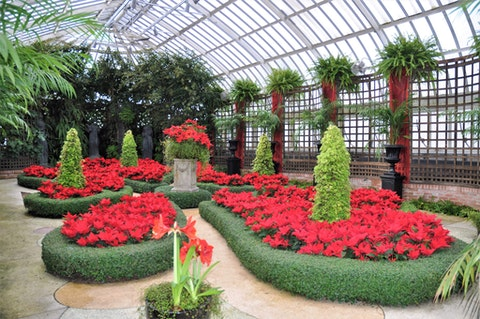 A visit to the Winter Flower Show at Phipps Conservatory will include beautiful sights and a floating carousel on a pond. (Shutterstock Photo/StacieStauffSmith Photos)