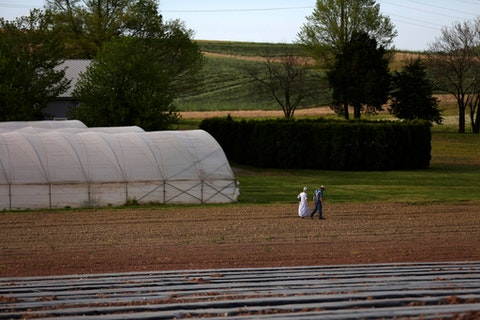 In this Saturday, May 16, 2020, photo, a family walks their field in the Mennonite Valley of Lancaster County, Pa. (AP Photo/Jessie Wardarski)