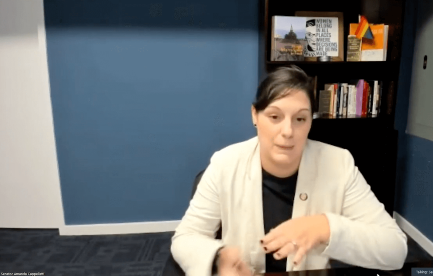 State Sen. Amanda M. Cappelletti (D-Montgomery) speaks during a virtual public hearing on the need for workplace accommodations for pregnant and postpartum Pennsylvanians.