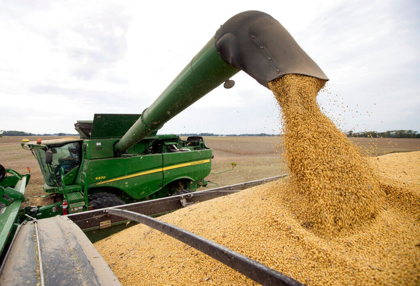 """In this Sept. 21, 2018, file photo, Mike Starkey offloads soybeans from his combine as he harvests his crops in Brownsburg, IN. The escalating trade war between the U.S. and China at that time caused anxiety among rural farmers and bankers. Upper Midwest soybean farmer Jamie Beyer said those were days of """"a little bit of panic."""" Many farmers would probably say the same of these days as well. (AP Photo/Michael Conroy, File)"""