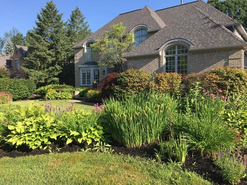 Wayne Oliver, owner of River Bend Gardens in Washtenaw County, has a home garden in Farmington Hills full of native Michigan plants. (Photo courtesy of Wayne Oliver)