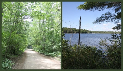 Parcels of land like these will be auctioned by Michigan's Department of Natural Resources. Photos via MI DNR Facebook.