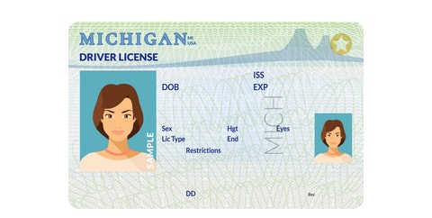 Michigan residents may be able to renew their driver licenses and state identification cards less frequently in person. Instead, online and mail renewals will be allowed, pending House approval.