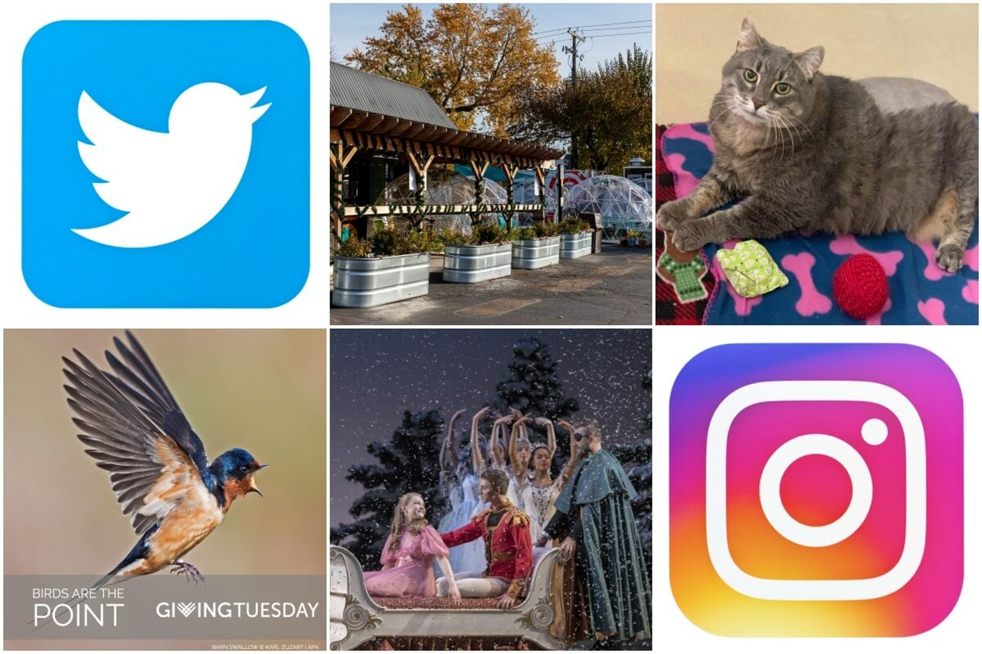 Social media accounts can give Michiganders insight about what's going on around the state, and inspiration to get involved.