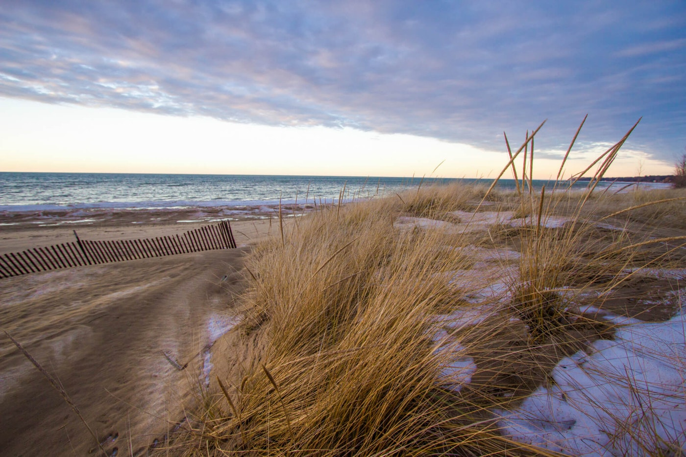 Golden dune grass on a sandy beach on the shores of Lake Huron.